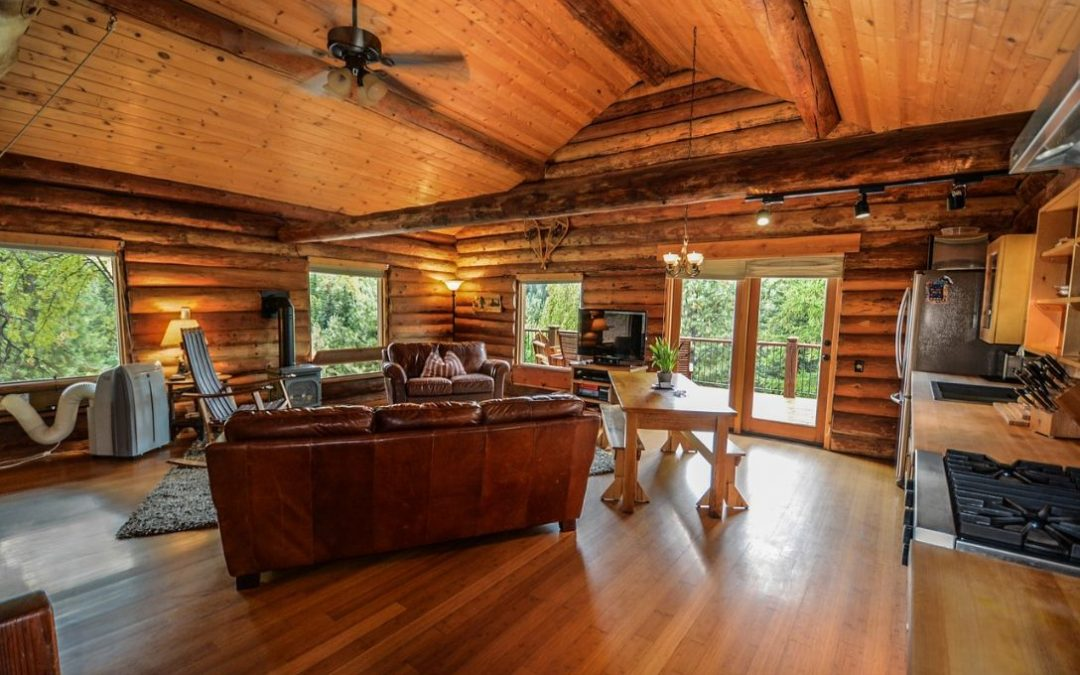 Importance of Choosing the Right Timber for Decking